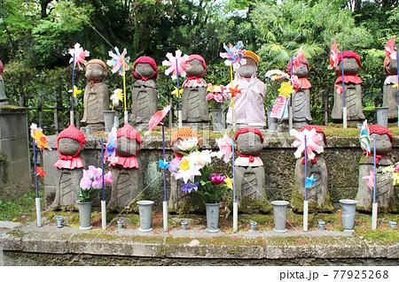 増上寺のお地蔵さん 77925268