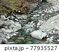 神奈川県 西丹沢の渓谷1 77935527