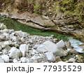 神奈川県 西丹沢の渓谷3 77935529