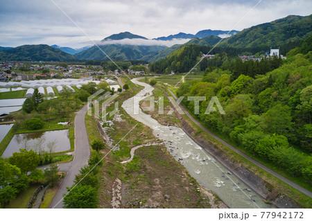 治水対策で河原の木が切られた姫川と濁流(ドローンによる空撮)長野県白馬村 77942172