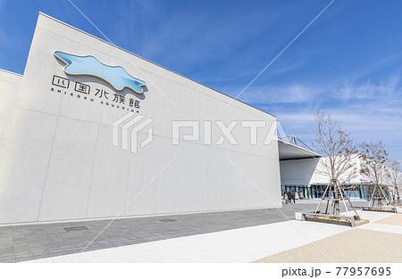 香川県 晴天の四国水族館 77957695