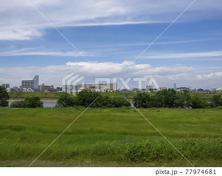 松原市天美西付近の大和川河川敷の風景 77974681