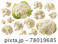 Cauliflower heads and pieces set isolated on white background 78019685