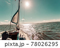 Yachting on sail boat during sunny weather 78026295