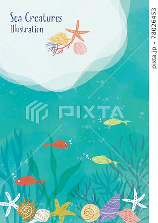 海の生き物のイラスト/縦レイアウト 78026453
