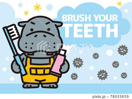 歯みがきをするカバくん 78035659