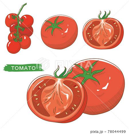 トマトセット 78044499