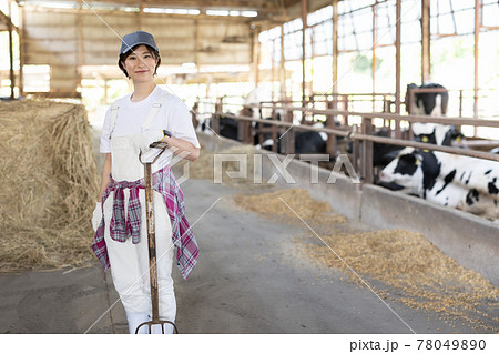 牧場で働く若い酪農家 78049890