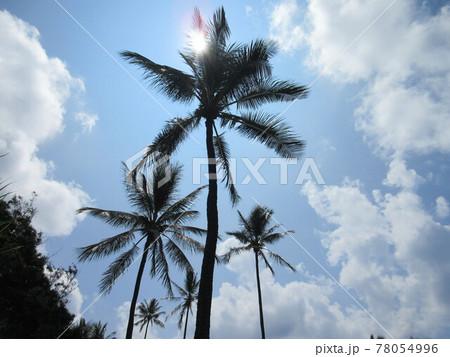 ハワイの太陽を背に青い空と白い雲 78054996