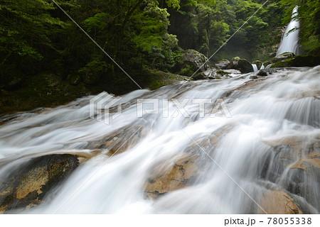 【奈良県十津川村】笹の滝(日本の滝百選) 78055338