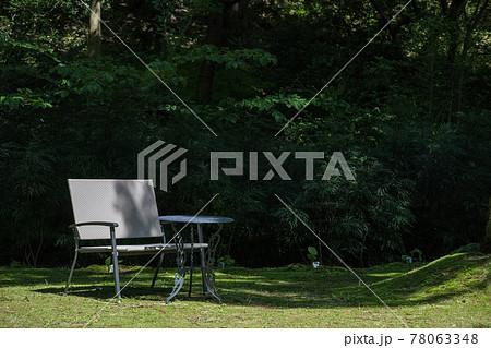 レッドヒルヒーサーの森 木陰のベンチ 78063348