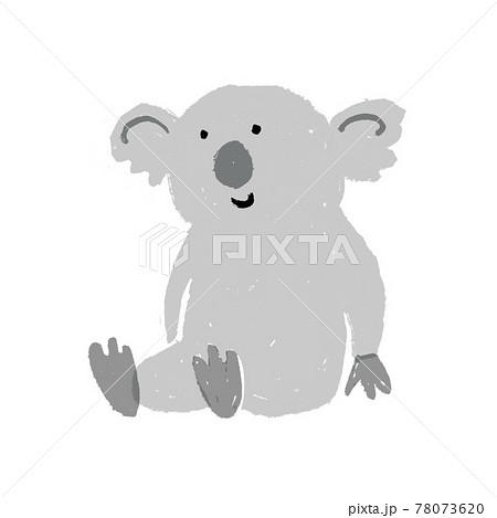 コアラ オーストラリアの動物 78073620