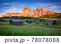Mt.Langkofel at sunset, view from Seiser Alm, Dolomites, Italy 78078088