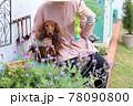 ダックスフンドと庭 78090800