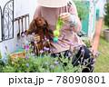 ダックスフンドと庭 78090801
