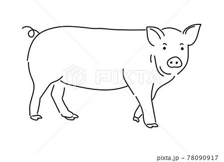 ぶた 豚 ブタ イラスト 養豚 家畜 78090917