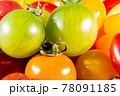 背景素材 カラフルで美味しそうなプチトマト 78091185