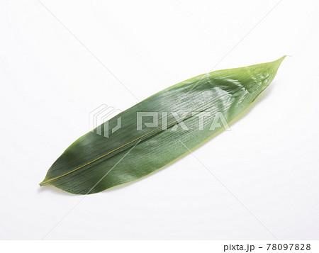 笹の葉 78097828