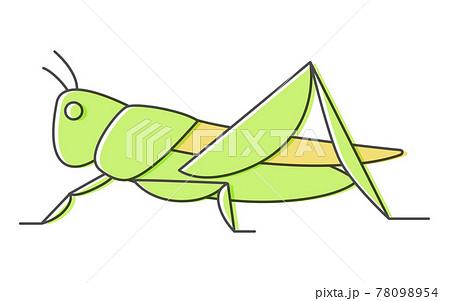 バッタ、昆虫食で食べられる昆虫 78098954