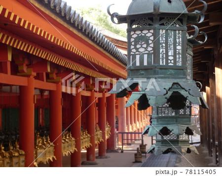 回廊に奉納された吊り灯籠・春日大社 78115405