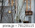 冬のリゾート地の夕方、ホテルの窓と暖かい明かり、庭にある葉が落ちた木と閉じたパラソル 78120115