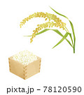 稲穂と米のイラスト/水彩タッチ 78120590