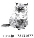 ブサカワな猫 墨絵イラスト 78131677