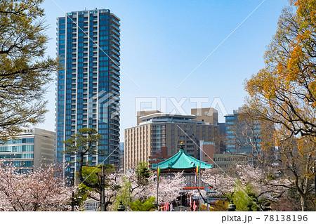東京都台東区 上野公園の桜と街並み 78138196