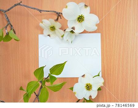明るい木目とハナミズキの花を背景にした長方形の白色のカードのモックアップ 78146569