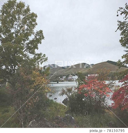 長野県の観光地である白樺湖の紅葉の風景 78150795
