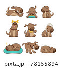 Set Of Cartoon Dog Poses Vector 78155894