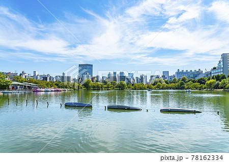 【東京都】上野恩賜公園の不忍池から見える都会のビル群 78162334