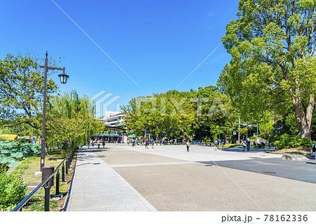 【東京都】綺麗な青空と自然に囲まれた上野動物園の弁天門 78162336