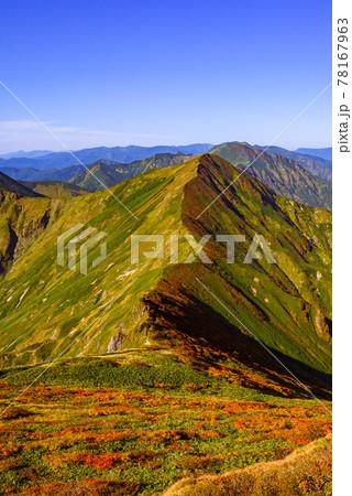 青空と谷川連峰主脈稜線・紅葉シーズン 78167963