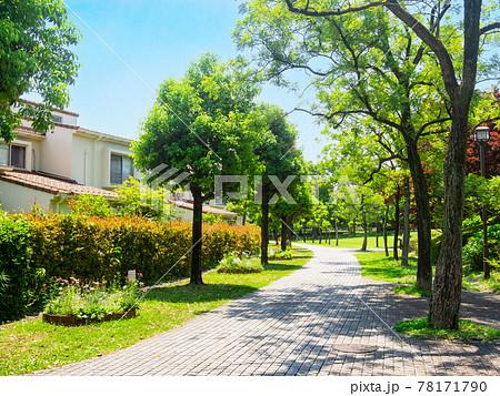 郊外の住宅地 花壇のある生活道路 78171790