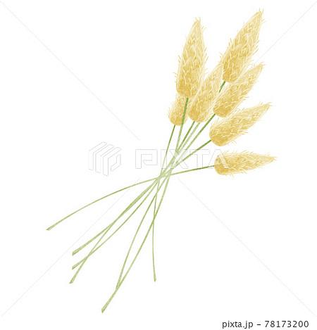 花束の手描き水彩イラスト 78173200