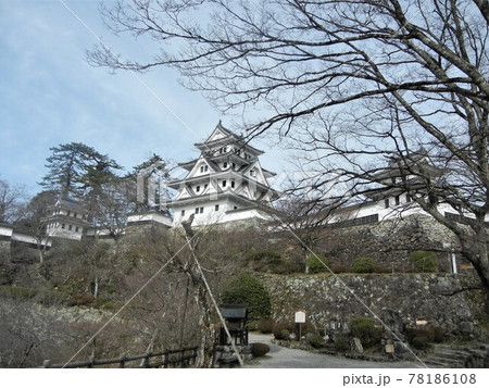 日本のお城:岐阜県郡上市の郡上八幡城 78186108