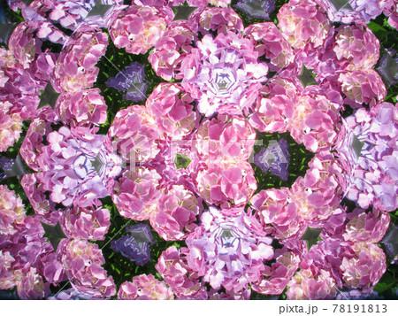 テレイドスコープで見たあじさいの花 78191813