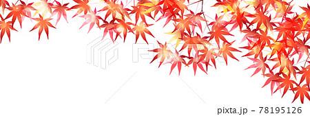 紅葉 もみじ 秋 背景 78195126