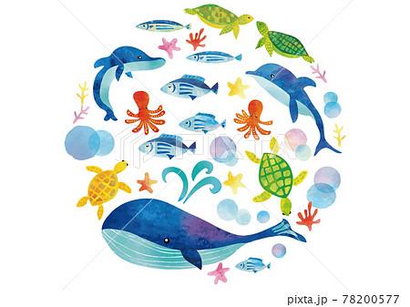 水彩風 海の生き物セット 78200577
