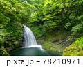 三重県名張市の赤目四十八滝 五瀑「不動滝」 78210971