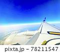 ANA翼の上 78211547