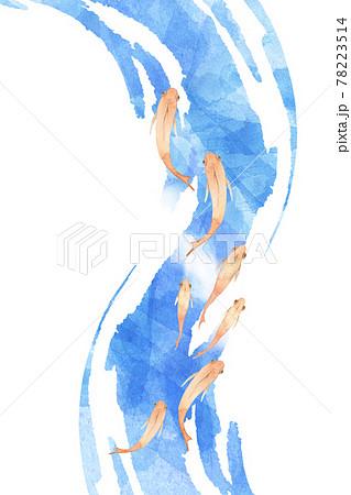 メダカの群れの水彩画 78223514