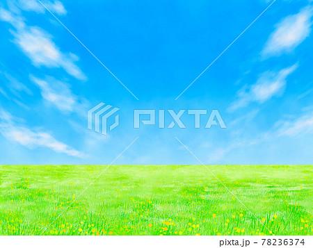 草原と青空(エコイメージ) 78236374