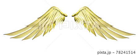 Two golden angel wings with gold color isolated on white background and clipping path 78241514