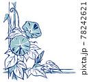 竹垣に伝う二輪の朝顔の花と蕾 手描き・2色塗り淡色 78242621