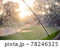 ビニール傘から見る夕陽2 78246325