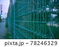 緑色のフェンス 78246329