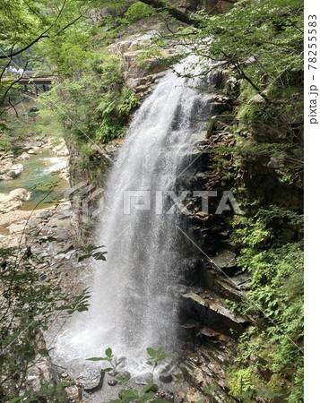 水量豊富でダイナミックな龍王峡の虹見の滝 78255583