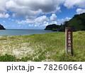 世界自然遺産の小笠原諸島 父島の海 78260664
